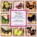 Flowers & Butterflies Mini Theme Image Book