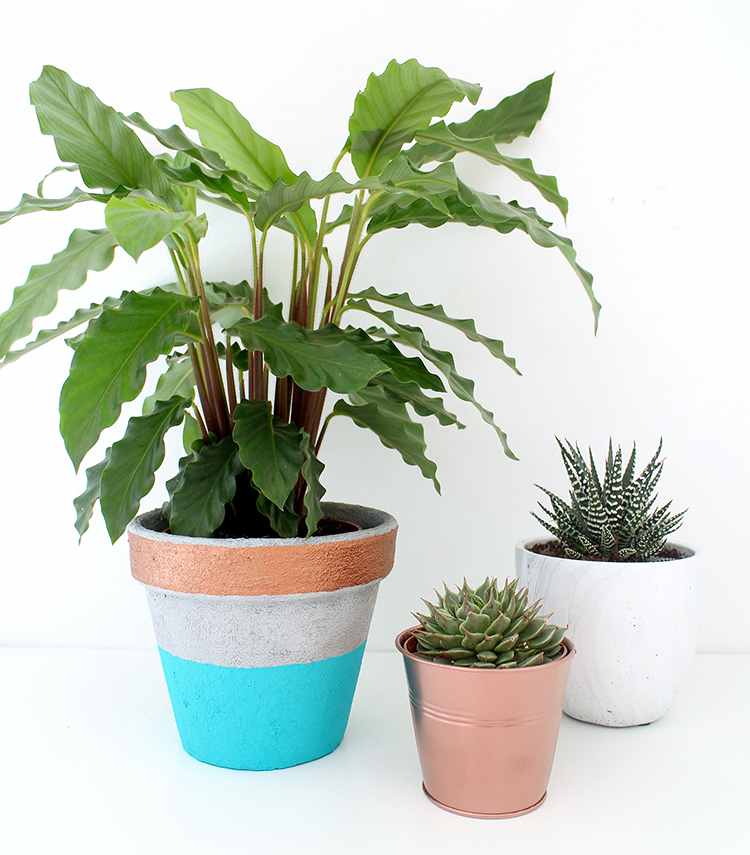 Easy concrete pot made with concrete paste and acrylic paint