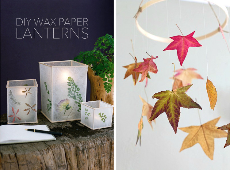 Wax paper lanterns and preserved leaves
