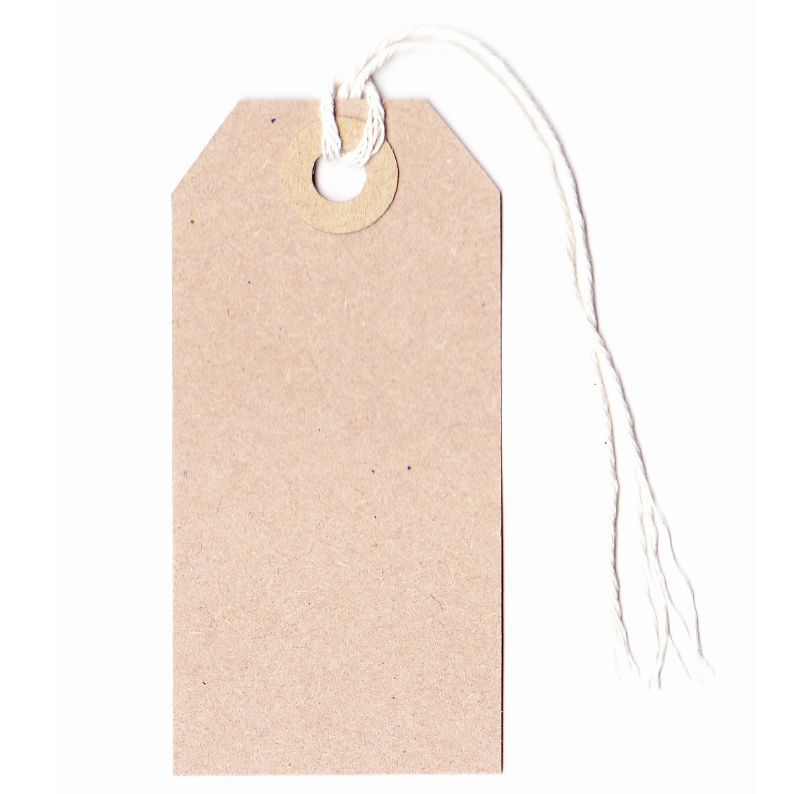 Tag: Manilla Strung Luggage Style Tags 82x41mm