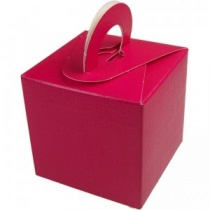 Fuchsia Mini Gift Box