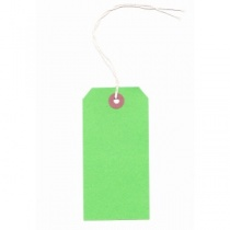 Green Strung Tags 120x60mm, pack of 20